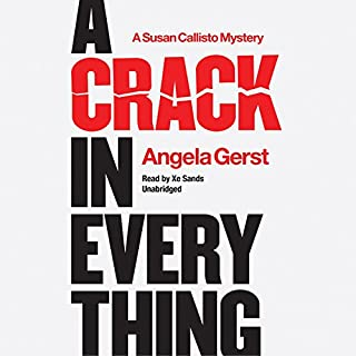 A Crack in Everything     The Susan Callisto Mysteries, Book 1              By:                                                                                                                                 Angela Gerst                               Narrated by:                                                                                                                                 Xe Sands                      Length: 8 hrs and 40 mins     6 ratings     Overall 3.2