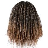 Roktress Marley Hair For Twists Marley Braiding Hair Marley Braid Crochet Hair Long Afro Kinky Marley Twist Braid Hair Extensions 100% Kanekalon Synthetic Fiber (16'6pcs, T33#)