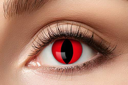 Zoelibat Farbige Kontaktlinsen für 12 Monate, Katze, 2 Stück, BC 8.6 mm / DIA 14.5 mm, Jahreslinsen in Markenqualität für Halloween, Fasching, Karneval, rot