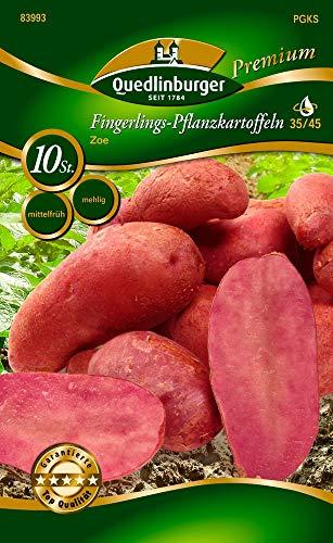 Quedlinburger 83993 Kartoffel Zoe (10 Stück) (Pflanzkartoffeln)