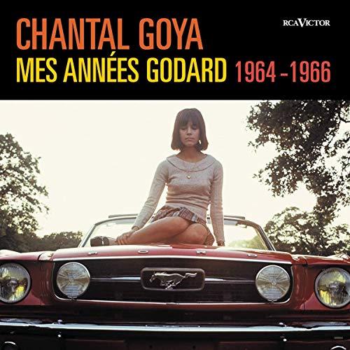 Mes Années Godard