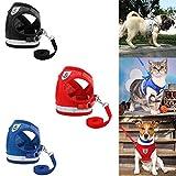 yiguanguan Hundeleine, bequem, Sicherheitsgeschirr für Hunde und Katzen, reflektierend, weich, verstellbar, zum Laufen, Joggen, Wandern, Reisen, Schwarz, XL