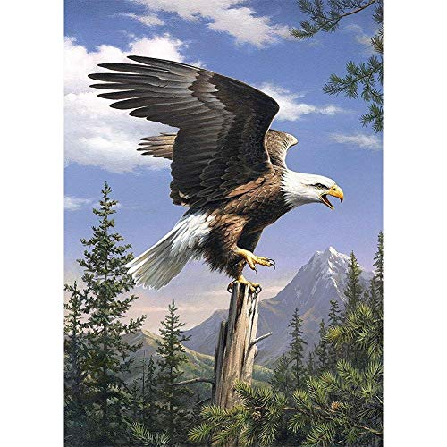 5D Diamond Painting Diamant Malerei Painting Bilder, Wowdecor Bald Eagle Animals Mountain Landscape Full Set Groß DIY Diamant Gemälde Malen Nach Zahlen