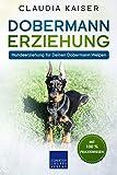 Dobermann Erziehung: Hundeerziehung für Deinen Dobermann Welpen (German Edition)