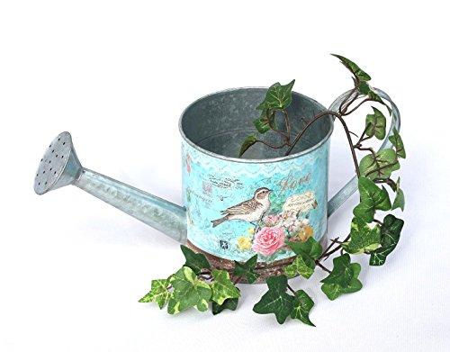 Decoratieve gieter 19833 van metaal zink 29 cm decoratie plantenpot tuin