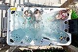Balboa Luxury Hot Tub Large, Party Size, New Model 2020, 95 psc Jets and 24 LED Lights