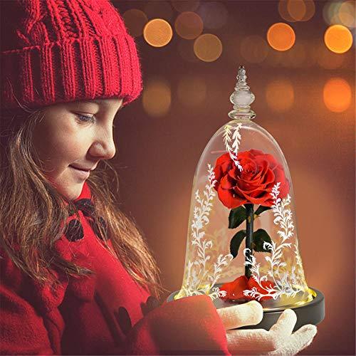 Mttac Belleza y bestia flores eternas de rosas en la cúpula de cristal, con luces LED de noche, proporcionan a las niñas regalos de Navidad, cumpleaños y San Valentín NO03-rojo rosa real
