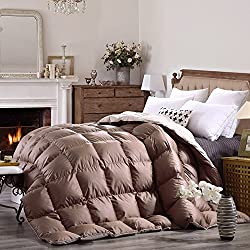 The Best Fall / Winter Duvets on the Market