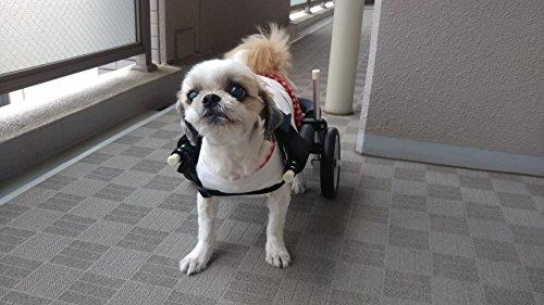歩犬舎『2輪車いす』