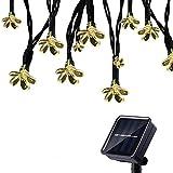Tuokay Solar Lichterkette Außen 7m 50 LED 8 Modi Wasserdicht LED Außenlichterkette mit Blumen, Dekorative Beleuchtung für Garten Balkon Pavillon Terrasse Rasen Hof Zaun Hochzeit Deko (Warmweiß)