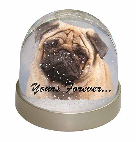Advanta Fawn Mops Hund 'Yours Forever' Foto Schneekugel Wasserball Strumpffüller Geschenk, Mehrfarbig, 9,2 x 9,2 x 8 cm