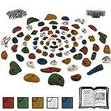 ALPIDEX Starterset: 80 Klettergriffe inklusive Schrauben und 250 Einschlagmuttern - für eine Kletterfläche von ca. 6 bis 10 m², Farbe:bunt