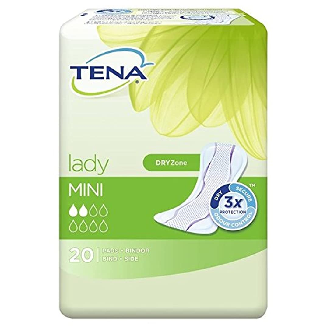 発火する付録迅速パックあたりテナ婦人ミニタオル20 x2 - Tena Lady Mini Towels 20 per pack (Pack of 2) [並行輸入品]