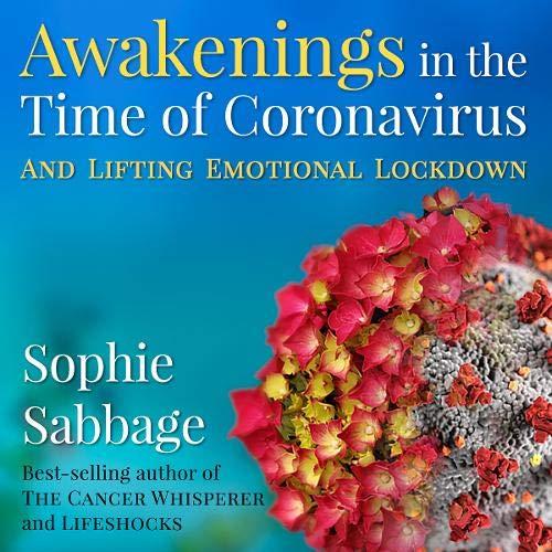 Awakenings in the Time of Coronavirus Audiobook By Sophie Sabbage cover art