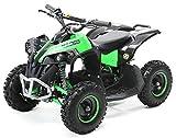 Actionbikes Mini Kinder ATV RENEBLADE 1000 Watt Pocket Quad