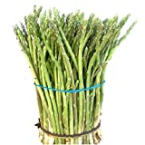 Semillas de Esparrago Triguero Asparagus Acutifolius 50 Semillas de Espárrago de Monte