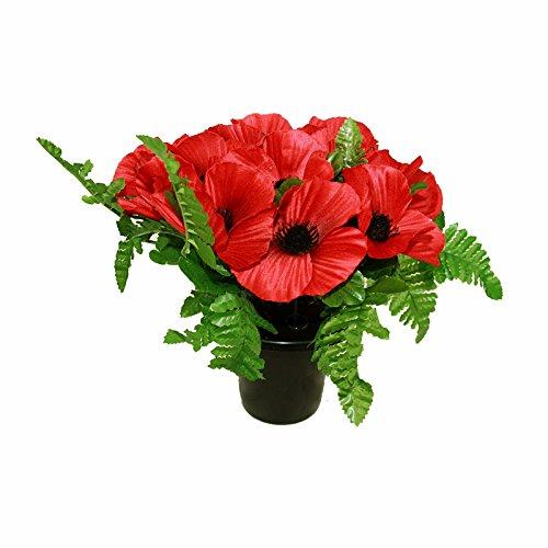 Amapolas y helecho de FloristryWarehouse tumba olla rojo 26cm