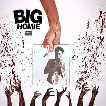 Big Homie (Response / Diss)