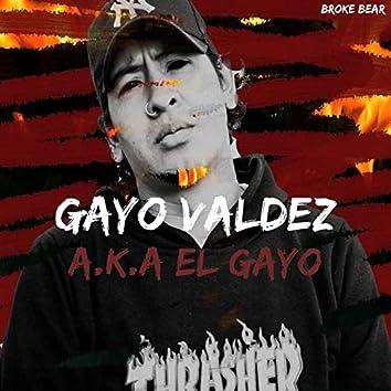 A.K.A Gayo