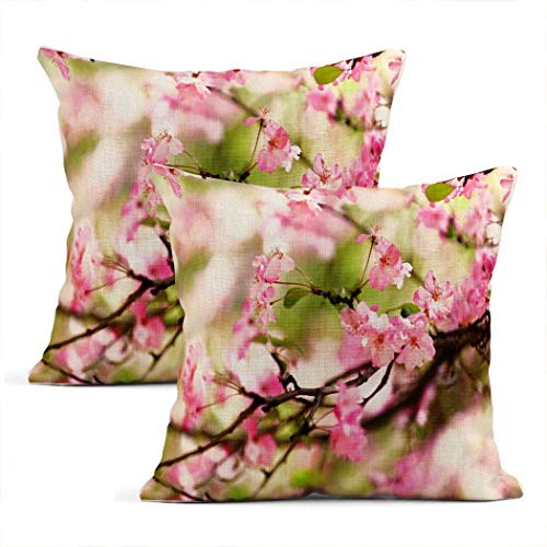 Xincow Set of 2 Throw Pillow Covers Plum Blossom Pink Peach Flowers on the Brunches Home Durable Decor Linen Pillowcase Square Cushion Sofa 20x20 Inches