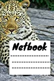 netbook: Leopard Print Composition Notebook - size 6 x 9 inch - 120 pages