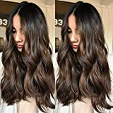 Zana Glueless Lace Front Wig Human Hair Loose Wave Ombre Highlights Remy Hair Wigs For Black Women Brazilian Lace Wigs With Baby Hair Natural Hairline 18inch