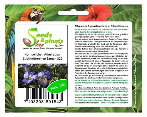 Stk - 130x Hornveilchen Admiration Stiefmütterchen Pflanzen - Samen #22 - Seeds Plants Shop Samenbank Pfullingen Patrik Ipsa