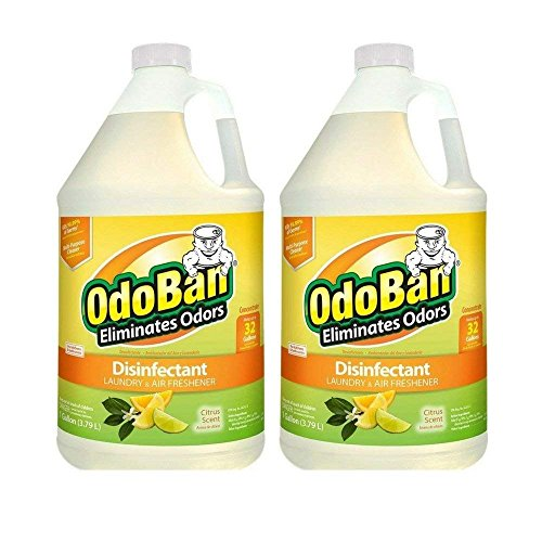 OdoBan Citrus Odor Eliminator and Disinfectant Multipurpose Cleaner Concentrate, 2 Gal, 3.79 Litre (2 Count),