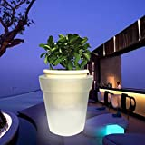 Woopower Macetero con luz LED, energía Solar, LED Blanco, Maceta para jardín, Patio, balcón, decoración