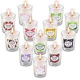 Facio Duftkerzen Geschenkset, 12 Stück Natürliches Sojawachs Tragbare Reisekerzen Kerzen Frauen Geschenk mit Stark Duftenden ätherischen Ölen für Yoga Jahrestag Bad Entspannung Geburtstagsgeschenk