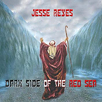 Dark Side of the Red Sea
