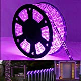 98ft LED Rope Light Kit, 720 LED Connectable and Flexible Tube Lights, Waterproof Indoor Outdoor LED Rope Lighting for Garden, Patio, Bedroom, Party, Wedding Decoration (Purple)