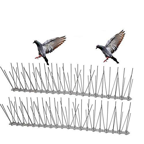 XIN XIN Pigeon Fence Puntas De Acero Inoxidable Disuasor De Aves Clavo De Aves Púas De Acero Inoxidable Base De Plástico para Paredes, Jardines, Cercas, Buzones