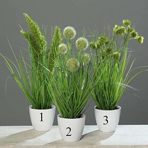 Grasbusch Gras Ziergras Kunstpflanze Dekopflanze H 24 cm 1016060-00 getopft F41