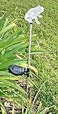 RELIGHTABLE Solar Powered Garden Stake LED Light, Set of 2 (Frog)