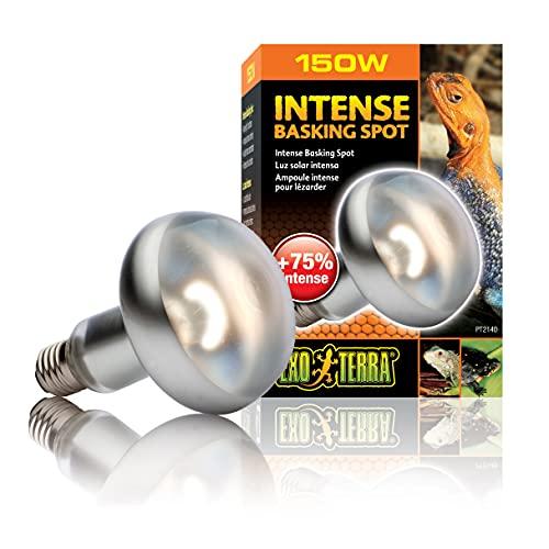 Exo Terra FocoDirecto SunGLO Ex Intense Basking Spot R30/150W, 150 Watt