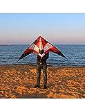 ZSYF Drachen Kite 1