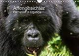 Affengesichter - Primaten in Uganda (Wandkalender 2021 DIN A4 quer)