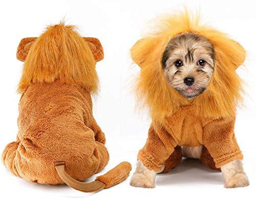 Idepet Disfraz de Mascota, Disfraz de Halloween para Perro, Disfraz de León, Cachorro, Navidad, Divertidos Disfraces de Cosplay, Gatos, Ropa Divertida