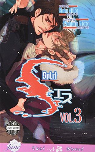 S Volume 3: Split (Yaoi Novel): 3