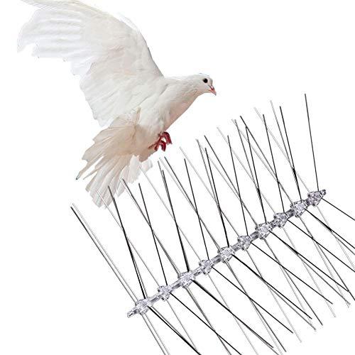 Stahlvogelspitzen, Edelstahl-Taubenabwehrspitzen Polycarbonat-Stare Schädlingsbekämpfung Für Obstgarten