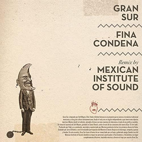 Gran Sur & Mexican Institute Of Sound