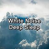 Walkie-Talkie Signals 733 Hz