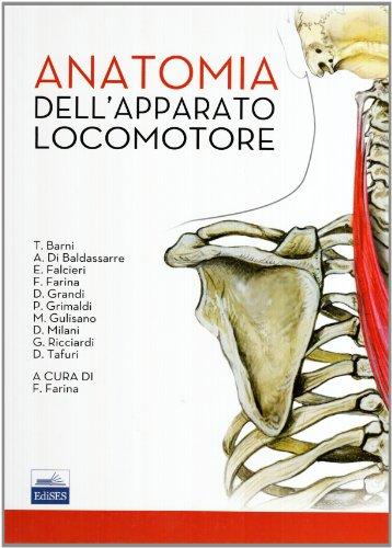 Anatomia dell'apparato locomotore
