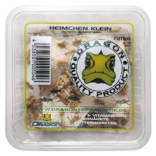 Dragon Heimchen Micro in Dose Micro, ca. 120 Stück Futtertier
