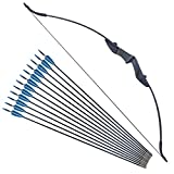 Recurve Bow and Arrow Set for Beginner Teens Archery Recurve Bow Kit 30 40Lbs Takedown Bow for Left and Right Hand with 12pcs Arrows Bow Hunting Training Target Practice (20lb)