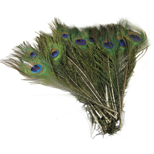 Estone 50pcs Beautiful Natural Peacock Tail Feathers About 10-12inch For DIY Decoration by HeroNeo®