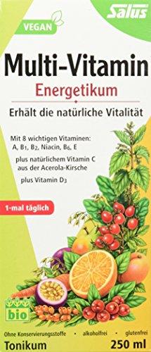 Salus Multi-Vitamin Energetikum – Vitaminkonzentrat zur Erhaltung der natürlichen Vitalität – mit vielen Vitaminen - vegan - 250 ml
