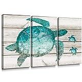 Sumgar Art Prints - Lienzo Decorativo de Pared con diseño de Tortuga...
