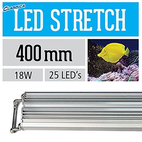 Arcadia CS40XM LED Stretch